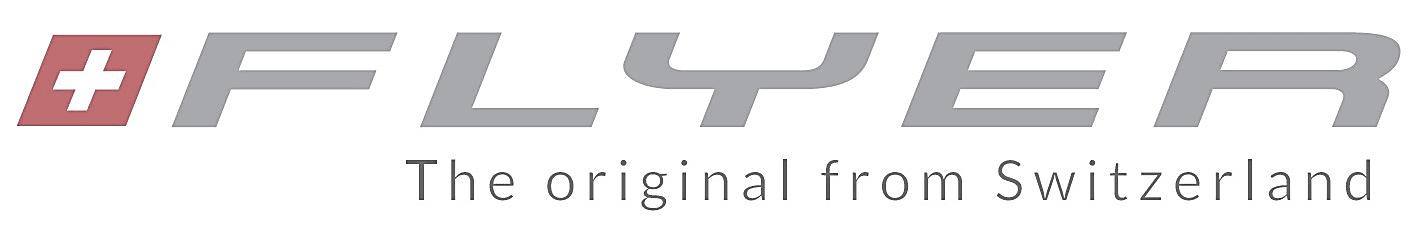 Logo Flyer fietsen
